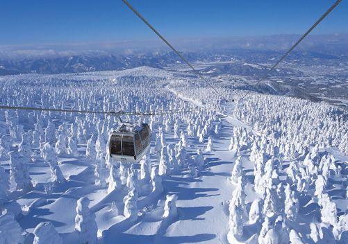 Zoe Ski Resort_Japão